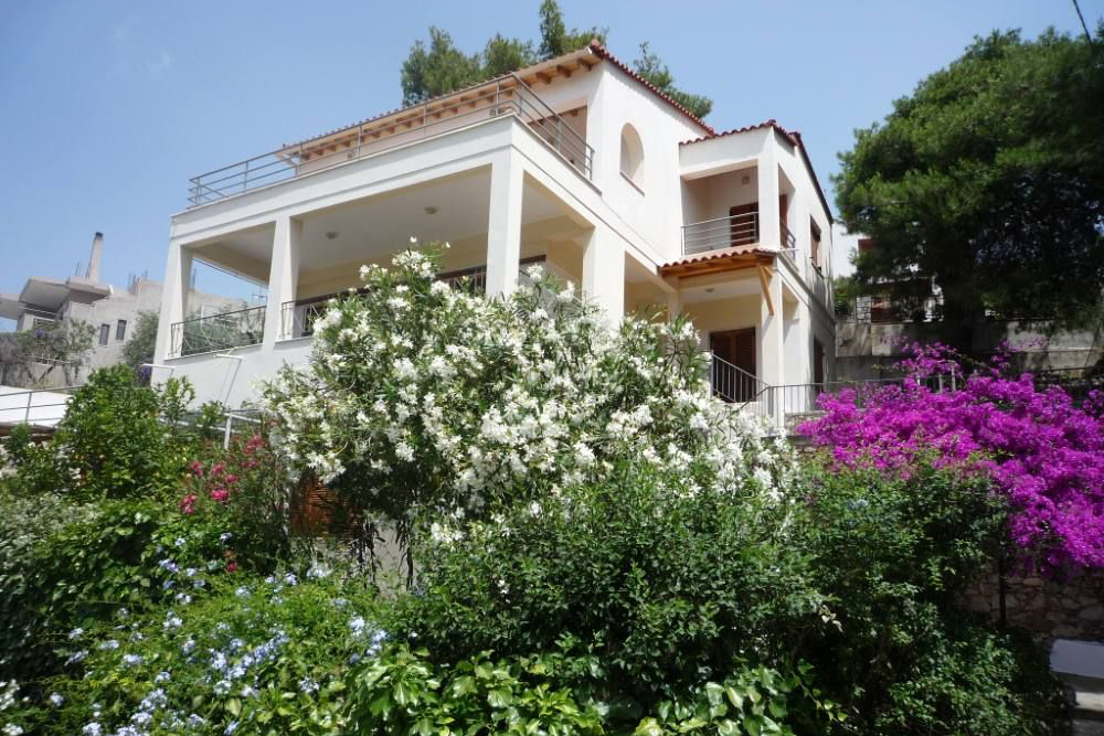 https://www.villas-alonissos.com/wp-content/uploads/2020/06/Iguana-vue-du-jardin-votsi.jpg